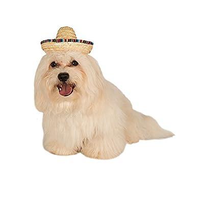 Rubies Costume Company Pet Sombrero Hat with Multicolor Trim