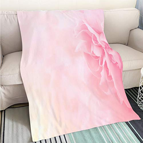 Custom homelife Abstract Home Decor Printing Blanket Pink Carnation Flowers Bouquet Soft Filter Perfect for Couch Sofa or Bed Cool Quilt