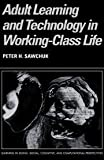 img - for Adult Learning and Technology in Working-Class Life (Learning in Doing: Social, Cognitive and Computational Perspectives) book / textbook / text book