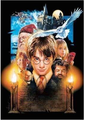LIZHIOO Harry Potter Peinture au Diamant Point de Croix 5d Peinture au Diamant perceuse carr/ée Broderie Diamant kit Complet Color : YL002, Size : 30x40cm