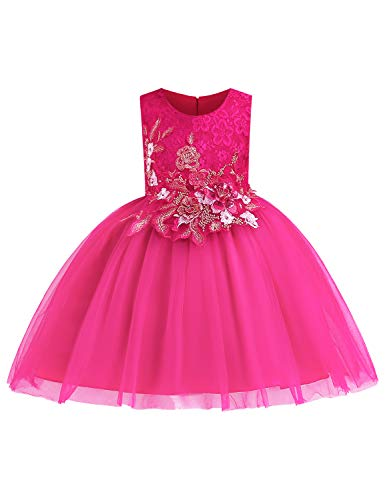 LIEEN Girls Sleeveless Wedding Party 3D Embroidered Flower Pageant Dresses