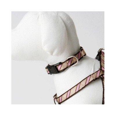 """Varsity Stripe Dog Collar Size: 3/8"""" Teacup"""