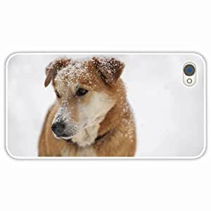 iPhone 4 4S Black Hardshell Case dog snout snow sad sight White Desin Images Protector Back Cover