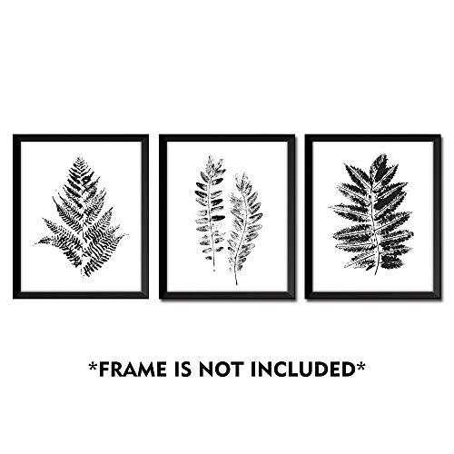 Gronda Black and White Fern Leaf Plants Wall Art Prints Poster for Living Room Bedroom Bathroom 8x10 inch,3 Panels ()