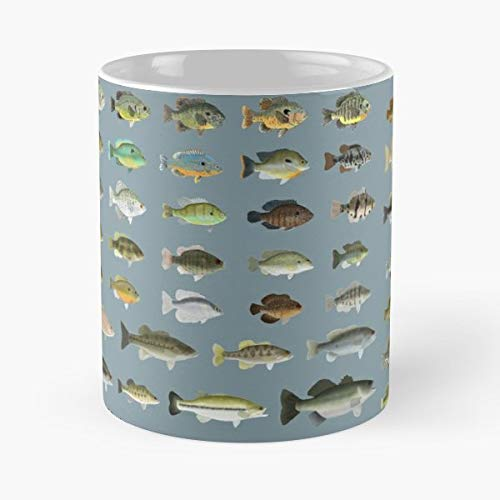 Bluegill Fish Fishing Green - Funny Gifts For Men And Women Gift Coffee Mug Tea Cup White 11 Oz.the Best Holidays.
