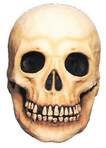 Latex Skull Halloween Prop (Large) by Halloween FX