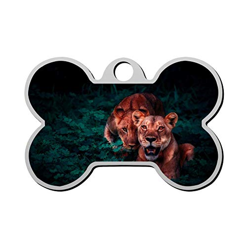 Mnxdine Pair of Lion Cubs in The Bushes in Africa Bone Shape Pet ID Tags Personalized Dog Tags Front and Back Print Name Owner Number