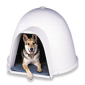 Petmate 25874 Caseta Dogloo XT, 25-50 LB, L: Amazon.es: Productos para mascotas