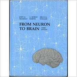 From neuron to brain a cellular and molecular approach to the from neuron to brain a cellular and molecular approach to the function of the nervous system 3rd edition fandeluxe Image collections