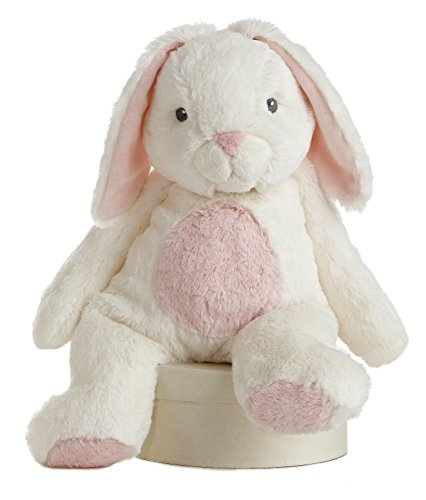 Aurora World Quizzies Stuffed Bunny
