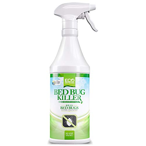 Eco Defense Bed Bug Killer Featured Image