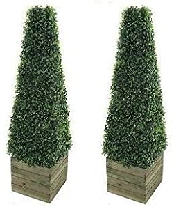 Twin Artificial Trees 3ft Pyramid Cones in wooden box stand ...