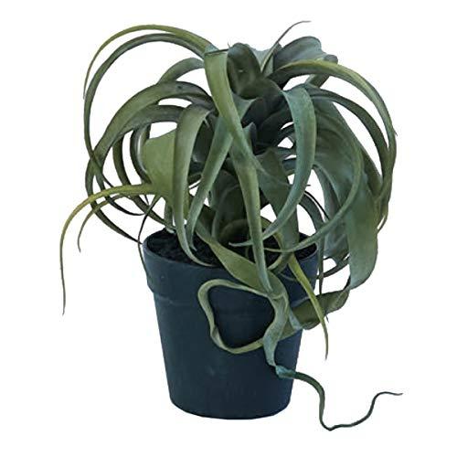人工観葉植物 キセログラフィァポット(4個セット) bb050 多肉植物 (代引き不可) インテリアグリーン 造花 POT SUCCULENT B07SXGJGKK