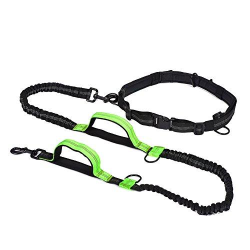Padded Waist Belt (Hands Free Dog Leash for Running Hiking Walking, Running Dog Pet Leash Extendible Shock Dual Absorbing Bungee Adjustable Padded Waist Belt)