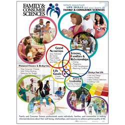 - Nasco Family and Consumer Sciences Life Skills Poster - WA32949