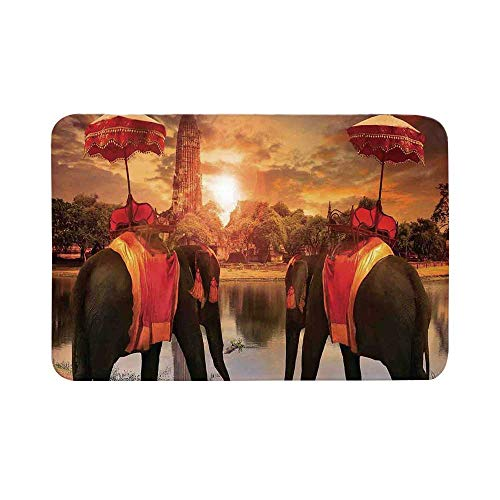 C COABALLA Asian Durable Door Mat,Animals Dressing Traditional Costumes Standing in Front of Pagoda Patience Symbol Print Decorative for Living Room,19.6