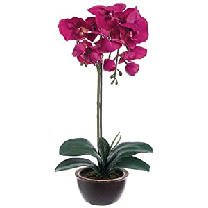 "20"" Silk Phalaenopsis Orchid Flower Arrangement w/Ceramic Pot -Orchid 54"