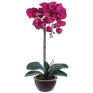 "20"" Silk Phalaenopsis Orchid Flower Arrangement w/Ceramic Pot -Orchid 30"