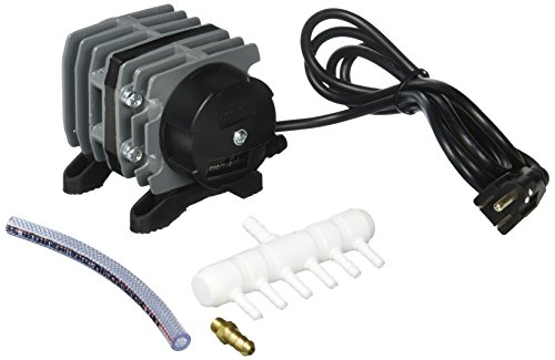 Elemental O2 Commercial Pump, 571 gph