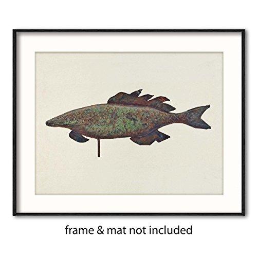 Review Fish Art, Coastal Decor