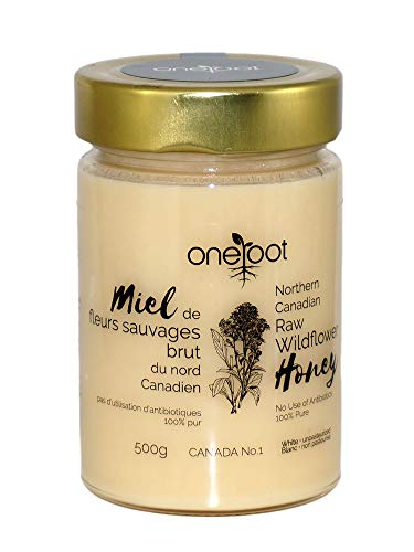 ONEROOT Canadian Raw Wildflower Honey (500g) (Organic Canadian Raw Honey)