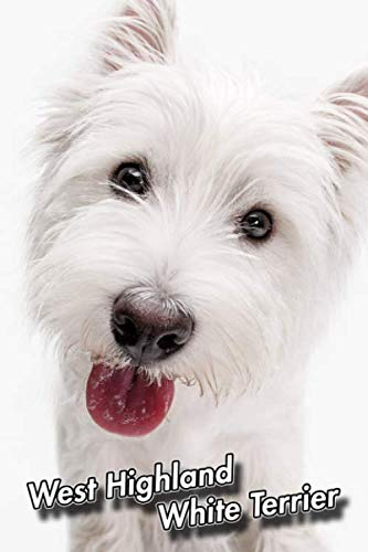West Highland White Terrier: Blank Sheet Music | 150 pages 6 x 9 in. | 11 Staves Per Page | Music Staff | Composition | Notation | Songwriting | Staff | Manuscript | Westie