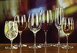 Luigi Bormioli Palace 8 oz Flute Sparkling Wine