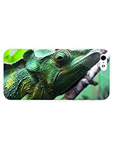 3d Full Wrap Case For Samsung Galaxy S3 i9300 Cover Animal Iguana27