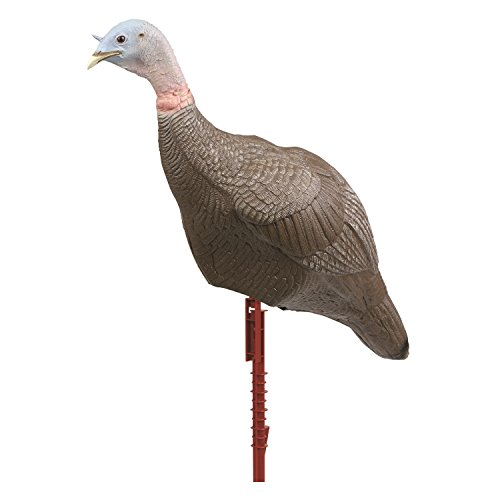 Flambeau Master Series (Flambeau Turkey Master Series Upright Hen Decoy)