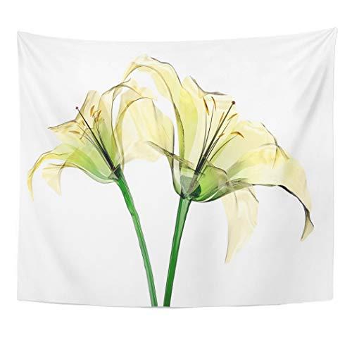 Tinmun Tapestry Xray Glass Flower White The Lily 3D Beautiful Beauty Wall Hanging for Living Room Bedroom Dorm 60x80 inches ()