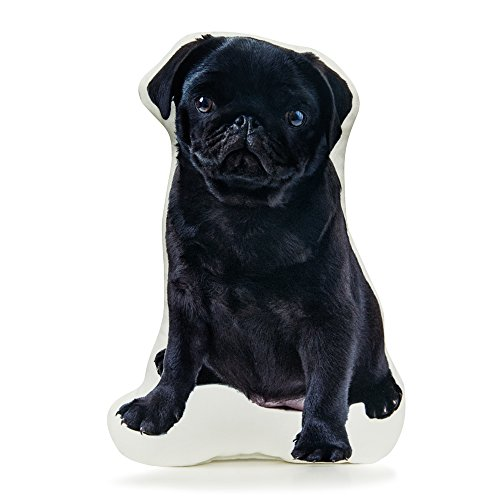 (Cushion Co - Pug Black Pillow 16