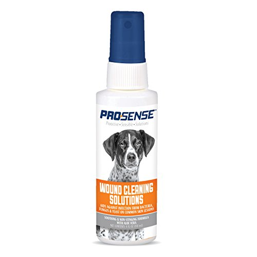 Pro-Sense Antiseptic Medicated Spray, 4-Ounce