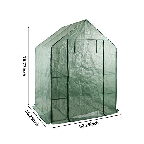 LINLUX Large Portable Walk-in Plant Greenhouse with PE Cover, 2 Tiers 8 Shelves Waterproof Gardening Steeple Greenhouse, Window Version and Roll-Up Zipper Door (56'' W x 56'' D x 77'' H Inch) by LINLUX (Image #4)