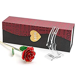 Ophanie 24K Gold Rose, Foil Trim Long Term Dipped Rose with Display Stand in Gift Box, Best Romantic Gift for Valentines Day, Mothers Day, Anniversary, Wedding, Birthday Present(Red) 118