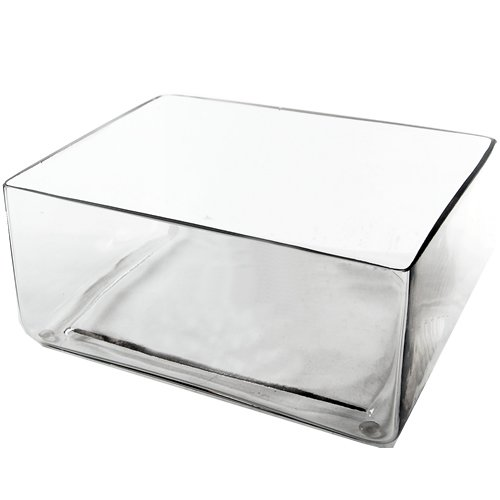 Glass Vases Containers - CYS EXCEL Rectangle Vase Block Vase Block Edge Clear Glass Vases. Height 4 inches, Open 9 by 7 inches