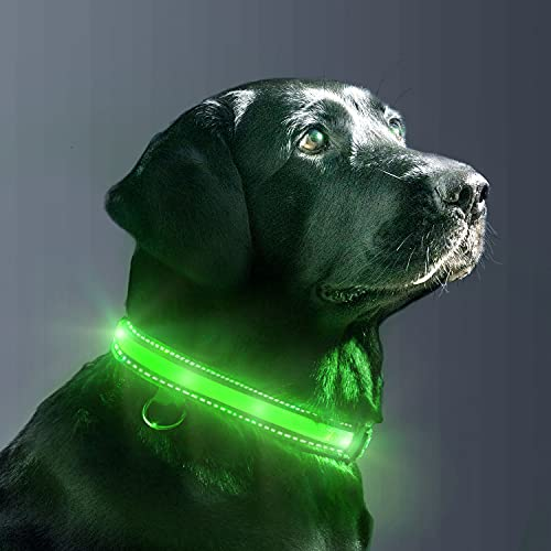 EVERSUNN LED Dog Collar – USB Rechargeable with Flashing Light Nylon Webbing Waterproof Adjustable Glowing Pet Safety Collar, Reflective Light Up Collars-Large