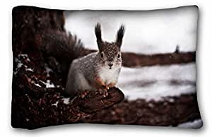 """Custom Animal Pillow Covers Bedding Accessories Size 20""""X30"""" suitable for Twin-bed"""