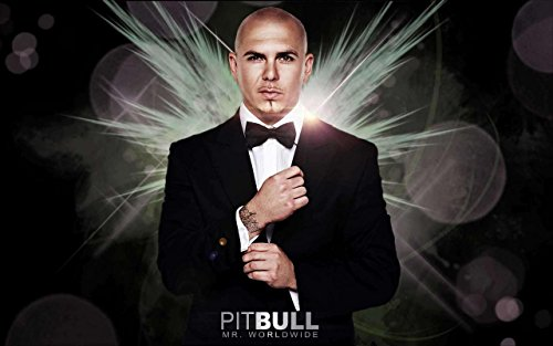 Pitbull Rapper Mr. Worldwide Singer Songwriter 12 x 18 Inch Quoted Multicolour Rolled Unframed Poster ()