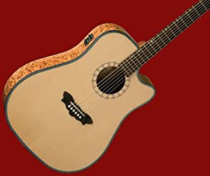 new washburn acoustic electric guitar w b band d46sce musical instruments. Black Bedroom Furniture Sets. Home Design Ideas