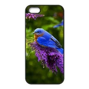 Birds ZLB603697 Custom Phone Case For Sam Sung Galaxy S4 I9500 Cover , Case For Sam Sung Galaxy S4 I9500 Cover Case