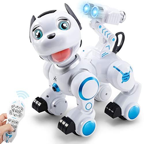 SGILE Robot Dog