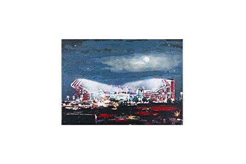 Glory Haus 41070913 South Carolina Williams Brice Stadium, Multicolor (Williams Stadium Brice)