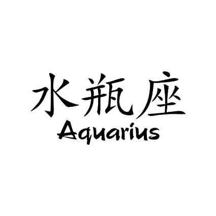 Aquarius chinese symbol