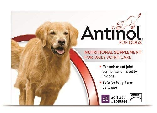 Antinol Joint Care Supplement for Dogs 60 ct by Antinol