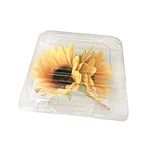 "DALAMODA 12pcs Corsage Flower Boutonniere Box 5"" X 4.25"" X 3"" PVC Clear Plastic Craft Container(Small) 53"