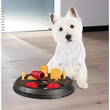 Trixie Flip Board - Puzle Interactivo, Juguete para Perro: Amazon.es: Productos para mascotas