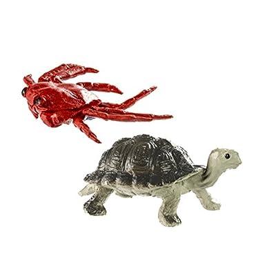 Safari Ltd Galapagos TOOB: Toys & Games
