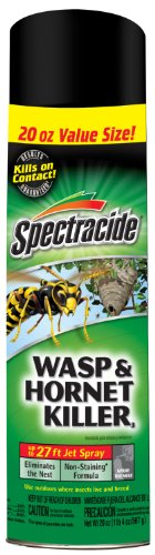 Spectracide 100046033 Wasp & Hornet Killer3 (Aerosol) (HG-95715) (20 oz), Case Pack of 1