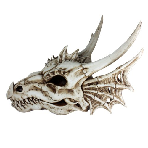 Dragon Skull Statue - Pacific Giftware Ancient Jurassic Fossil Dinosaurs Agujaceratops Dragon Large Skull Head with Wing