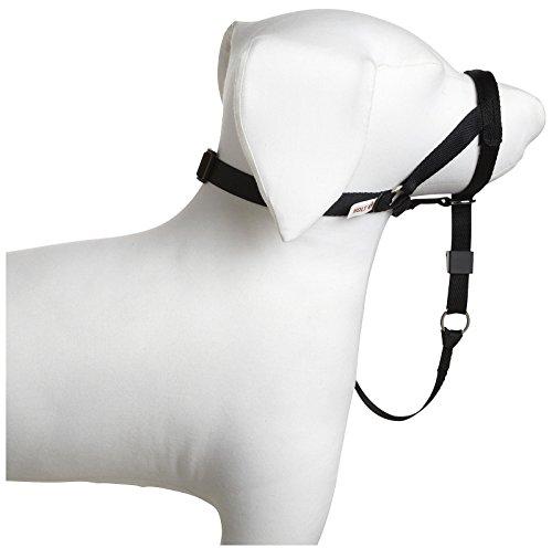 Coastal Pet Walk and Train Head Halter Collar. Size: Smal...
